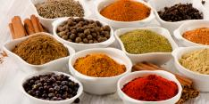 herbs and spices freeze dried  on a CHEMFAB freeze dryer conveyor belt